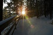 Starburst Sun Shine - Franconia Notch State Park New Hampshire  Print by Erin Paul Donovan
