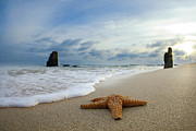 Beach Art - Starfish and monoliths by Sean Davey