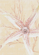 Starfish Digital Art - Starfish- Pink And Sand by Jane Schnetlage