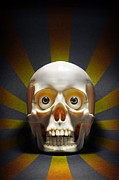 Shock Photo Prints - Staring Skull Print by Carlos Caetano
