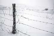 Snowstorm Photos - Stark Realities of Winter by John Haldane