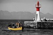 Andrew Hewett - Starlife Fishing Cruises