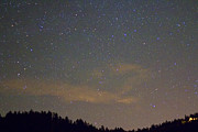 Stars Photos - Starry Night by James Bo Insogna