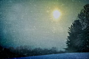 Snowy Night Art - Starry Night by Sheryl Bergman