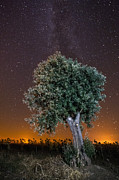 Alentejo Photos - Starry Sky at Alentejo by Andre Goncalves
