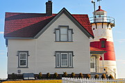 Stratford Photos - Startford Point Light by Catherine Reusch  Daley