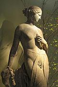 Greek Sculpture Metal Prints - Statuesque Metal Print by Jessica Jenney
