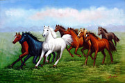 Horses On Sale Framed Prints - Steadfast Free Spirit Framed Print by American Artist