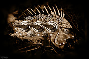 Shelly Stallings - Steampunk Fish