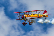 Stearman Prints - Stearman Biplane Print by Jerry Fornarotto