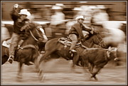 Steer Framed Prints - Steer Roping Framed Print by Bill Keiran