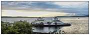 Puget Sound Framed Prints Prints - Steilacoom Ferry Print by Ron Roberts