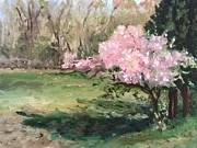 Tree Blossoms Originals - Stenger Farm Apple Blossoms  by Patty Kay Hall