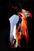 Young Horses Prints - Stepping Into The Light Print by Terril Heilman