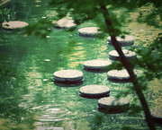 Stepping Stones Prints - Stepping Stones Print by Claire Carpenter