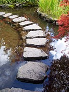 Stepping Stones Prints - Stepping Stones Print by Nicole Newton