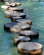 Stepping Stones Prints - Stepping Stones Print by Patrice Dwyer