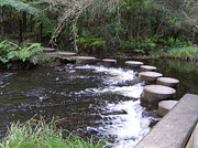 Stepping Stones Prints - Stepping to your Dreams Print by Janet Watson