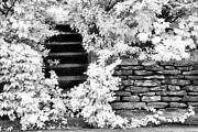 Jeff Holbrook - Steps And Stones