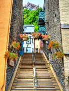 Quebec City Framed Prints - Steps Of Old Quebec Framed Print by Mel Steinhauer
