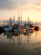 Shirley Sirois    Prints - Steveston Harbour Print by Shirley Sirois