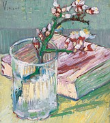 Still Life Paintings - Still life    a flowering almond branch by Vincent Van Gogh