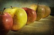 Barbara Orenya - Still life - Apples