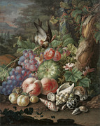 Seashell Fine Art Painting Prints - Still Life of Fruit with a Finch Print by Herman Henstenburg