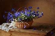 Still-life With A Basket Framed Prints - Still life with A Basket of Cornflowers Framed Print by Alina Lankina