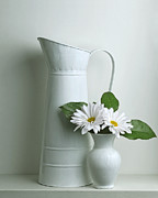 Still Life With Daisy Flowers Print by Krasimir Tolev