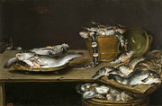 Famous Artists - Still Life with Fish Oysters and a Cat by Alexander Adriaenssen