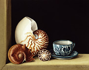 Sea Shells Painting Posters - Still Life With Nautilus Poster by Jenny Barron