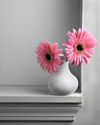 Work Pyrography Prints - Still Life with Pink Gerberas Print by Krasimir Tolev