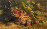 Still-life With A Basket Posters - Still Life With Plums In A Basket Poster by Geraldine Jacoba Van De Sande Bakhuyzen
