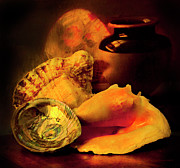 Table Top Framed Prints - Still Life With Shells Framed Print by Theresa Tahara