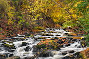 Autumn Art - Still River Rapids by Bill  Wakeley