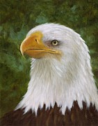 American Eagle Paintings - Still Watching by Kathy Lynn Goldbach
