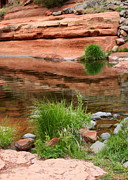 Red Rocks Of Sedona Prints - Still Waters at Slide Rock Print by Carol Groenen
