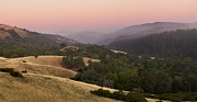 Palo Alto Prints - Stillness at Monte Bello Print by Matt Tilghman