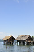 Of Water-dwelling Prints - Stilt houses at Lake Constance Germany Print by Matthias Hauser
