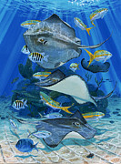 Bull Shark Paintings - Stingray City Re0011 by Carey Chen