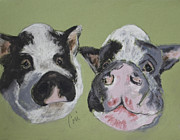 Pig Pastels Framed Prints - Stirring The Pot Framed Print by Cori Solomon
