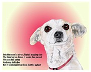 Animal Shelter Mixed Media - Stitch - a shelter sweetie by Dave Anderson