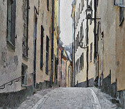 Urban Nature Study Prints - Stockholm 13 Print by Yury Malkov