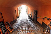 Cobble Stone Framed Prints - Stockholm Cobble Stone Street Framed Print by Sophie Vigneault