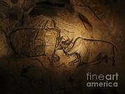 Javier Trueba MSF SPL - Stone-age Cave Paintings Lascaux