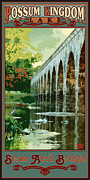 Possum Posters - Stone Arch Bridge Possum Kingdom Poster by Jim Sanders