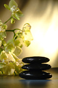 Zen Prints - Stone Cairn and Orchids Print by Olivier Le Queinec