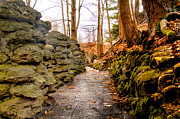 Stone Cold Walkway Print by Jim Lepard