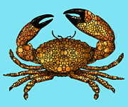 Florida House Prints - Stone Rockd Stone Crab by Sharon Cummings Print by Sharon Cummings